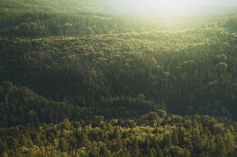 Zero23: Our Carbon Commitment